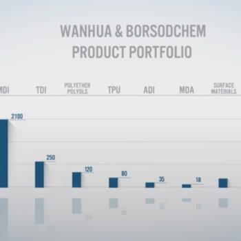Wanhua & Borsodchem animációs image film